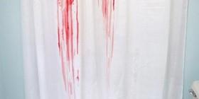 Mira mi nueva cortina y alfombrilla de baño