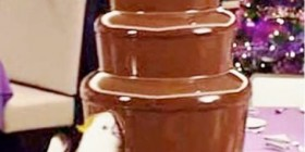 Cacatua dandose una chocolaterapia