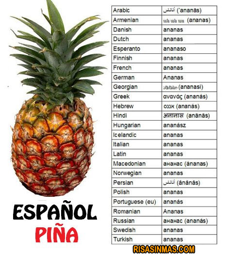 España vs Resto del Mundo