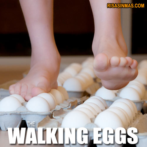 The Walking Eggs