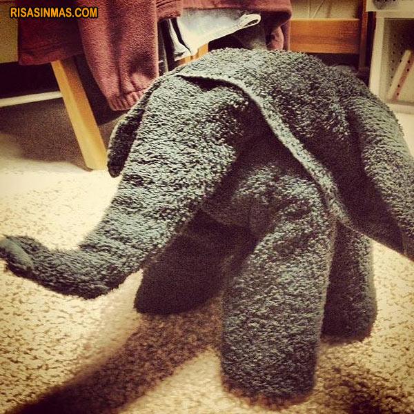 Toalla Elefante
