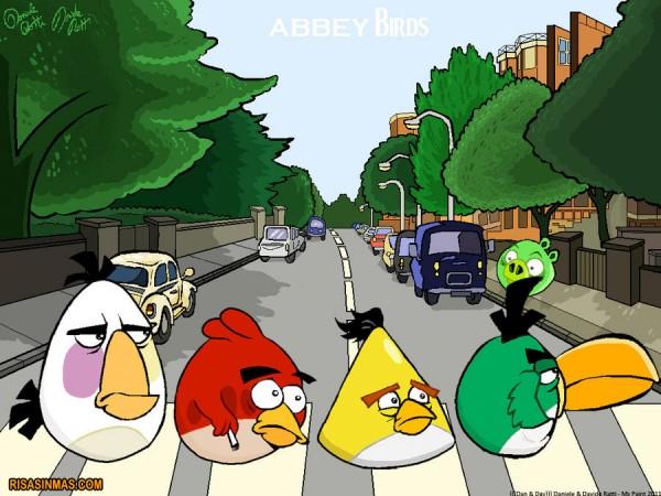 Abbey Birds