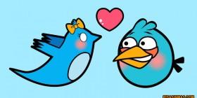 Amor social