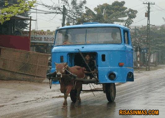 Autobús ecológico