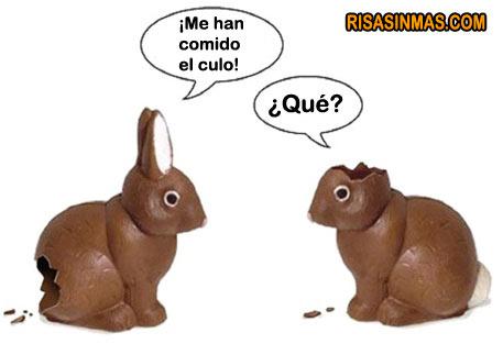 Conversación entre conejos de pascua