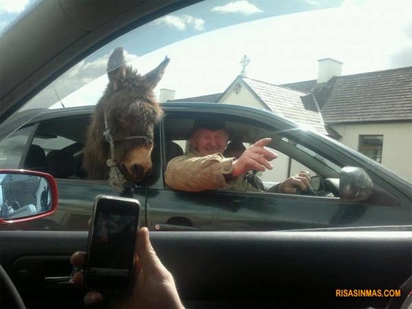 Mientras tanto en Irlanda...