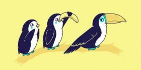 Pingüino disfrazandose de tucán