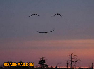 Comparte una sonrisa
