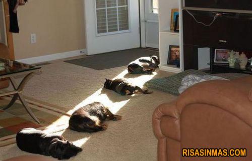 Un rayo de sol
