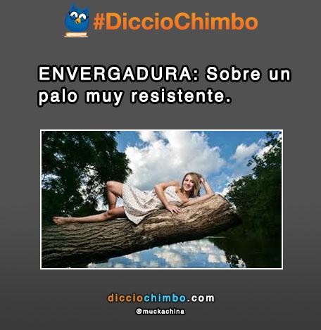 ENVERGADURA: Sobre un palo muy resistente