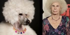 Parecidos razonables: Caniche - Duquesa de Alba