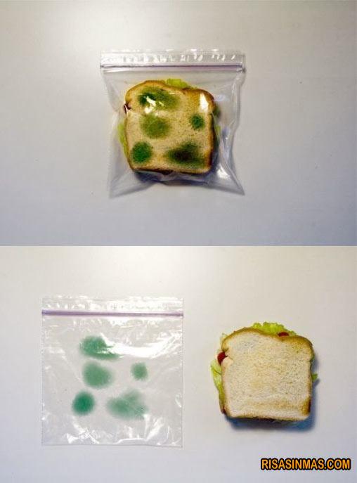 Bolsita antirobo para sandwich
