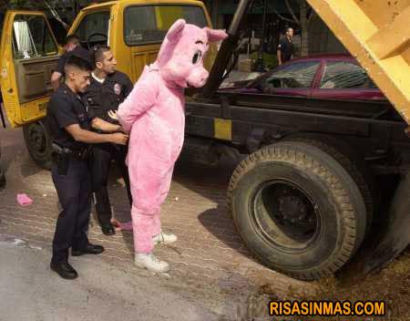 Detenido por conducir como un...