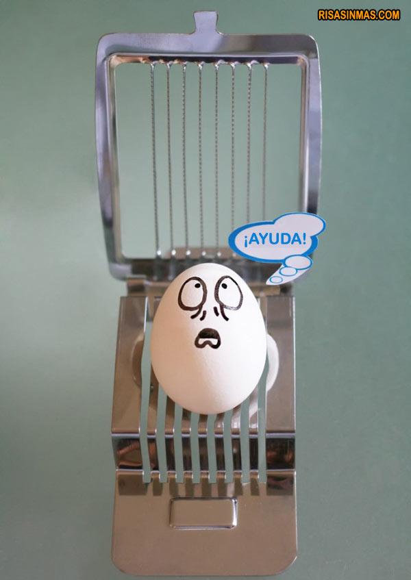 Huevo en peligro