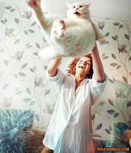 Miedo con forma de gato