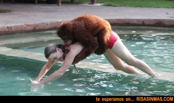 Mono bien agarrado