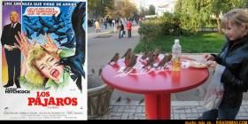 Remake de Los pájaros de Alfred Hitchcock