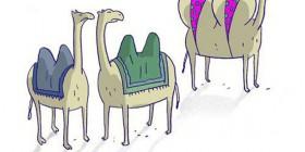 Camella Anderson