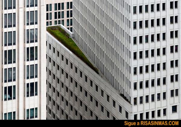 Espacios verdes en ciudades