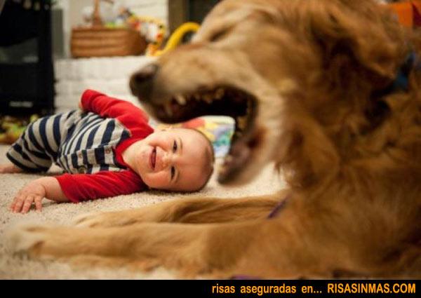 ¡Qué se come al bebé!