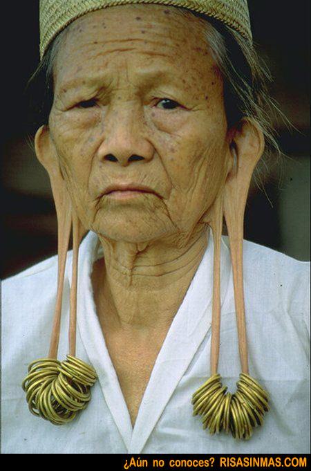 Las orejas más largas del mundo