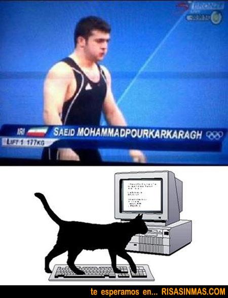 ¿Nombre real o gato tecleando?