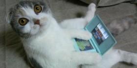 ¡Soy adicto a los videojuegos!