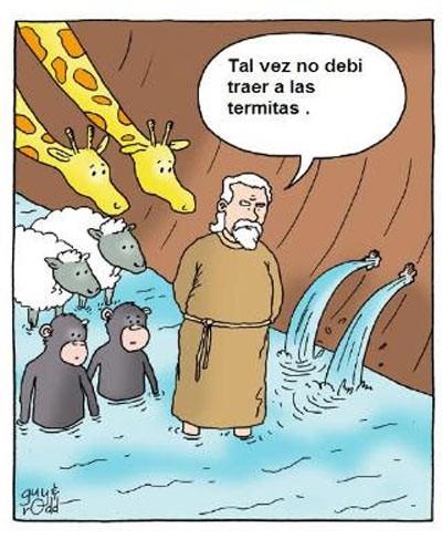 Termitas en el arca de Noé