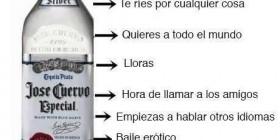 Etapas del alcohol