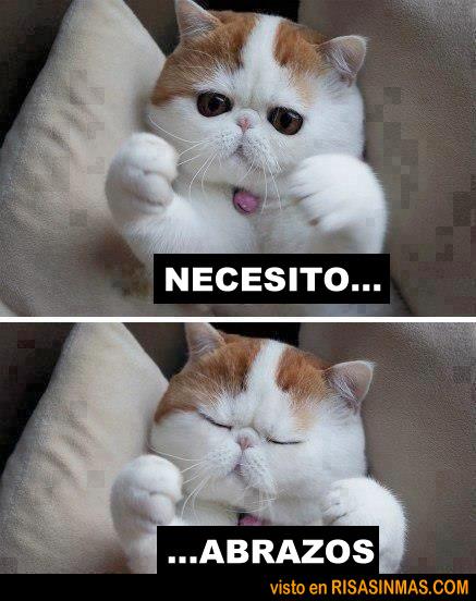 Necesito abrazos...