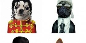 Parecidos razonables: perros y personajes famosos