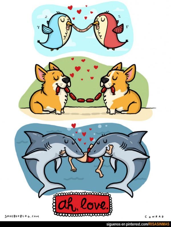 Amar es compartir
