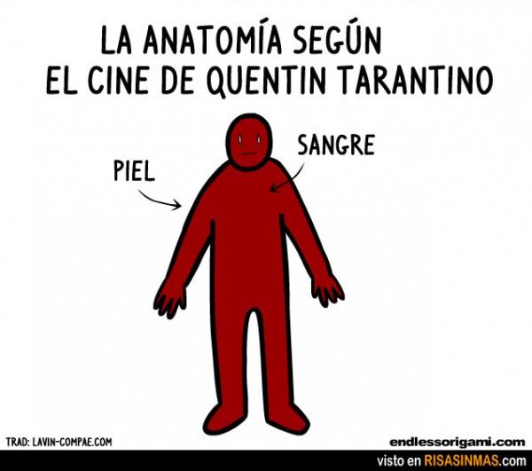 Anatomía en el cine según Tarantino