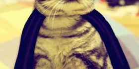 Disfraces gatunos: Batman