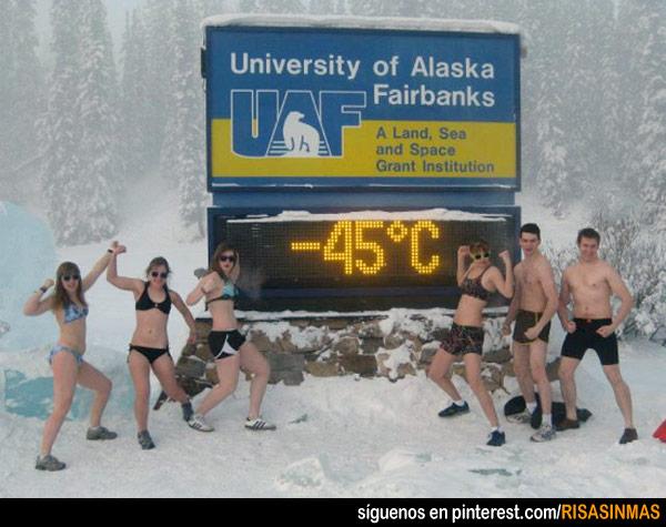 Mientras tanto en Alaska