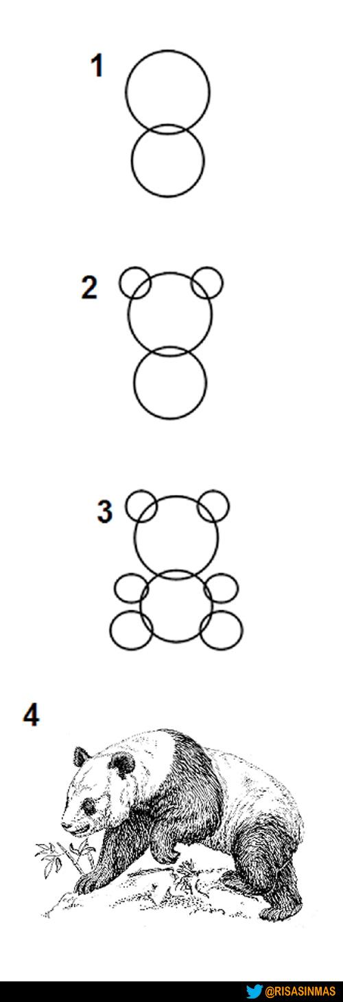 Cómo se dibuja un Panda en cuatro pasos