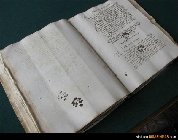 Gatos en el Siglo XV