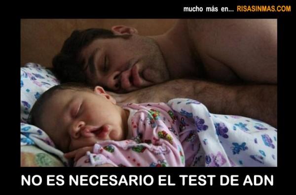 No es necesario el test de ADN