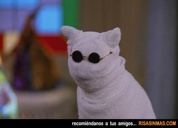 El gato del hombre invisible