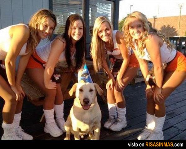 Posiblemente el perro más feliz del mundo