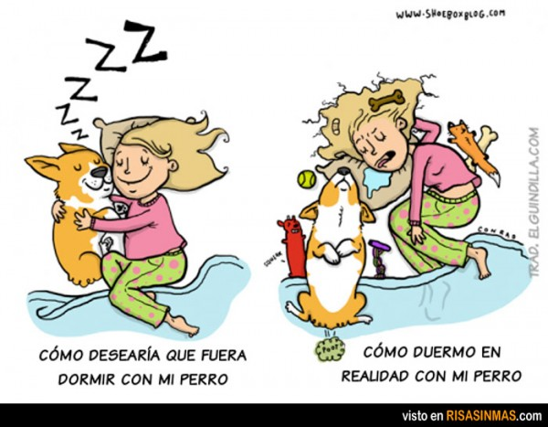 Expectativas al dormir con tu perro