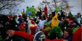 Harlem Shake de Angry Birds