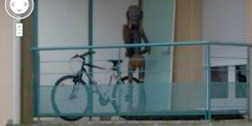 Imagen de Google Street View muy inquietante