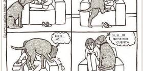 La lógica del perro