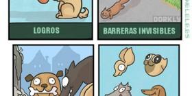 Ser perro es como estar en un videojuego