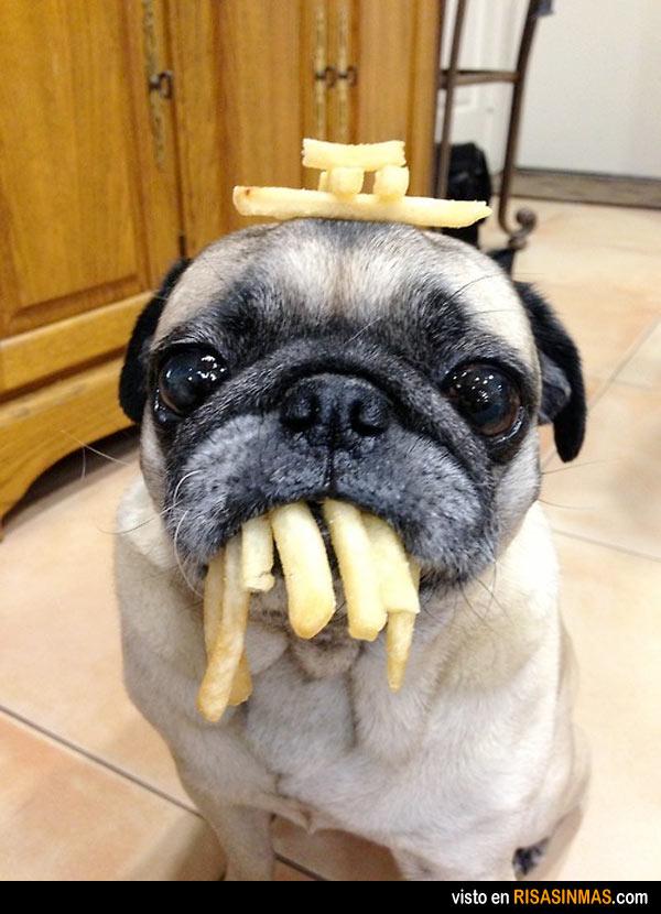 No tengo ni idea de dónde están tus patatas