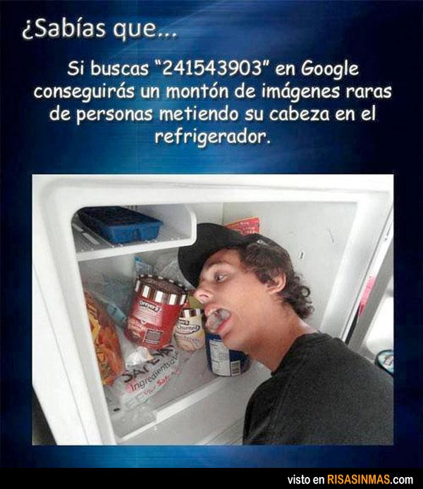 Busca 241543903 en Google