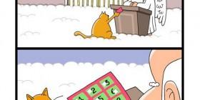 Las siete vidas del gato