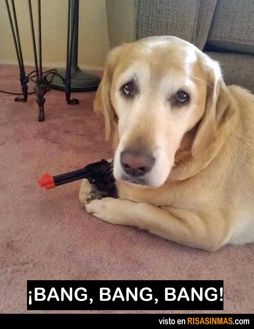El perro más agresivo del mundo