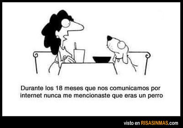 Comunicándose por Internet